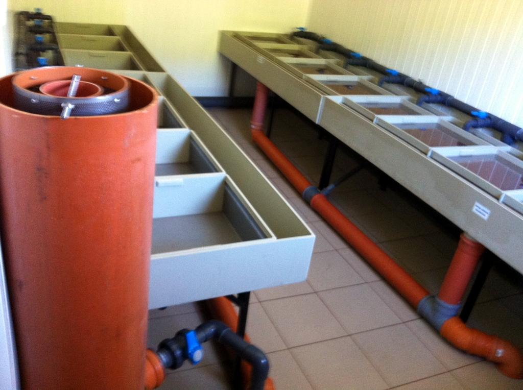 Sistem incubatie