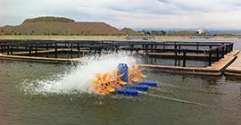 Aerator apa cu 4 pedale in functionare!