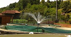 Aerator apa tip Novara - un produs propriu!