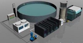 Proiectare bazine piscicole